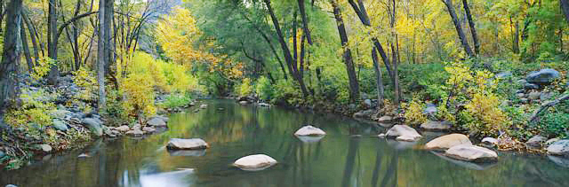 Stream in Cottonwood Canyon