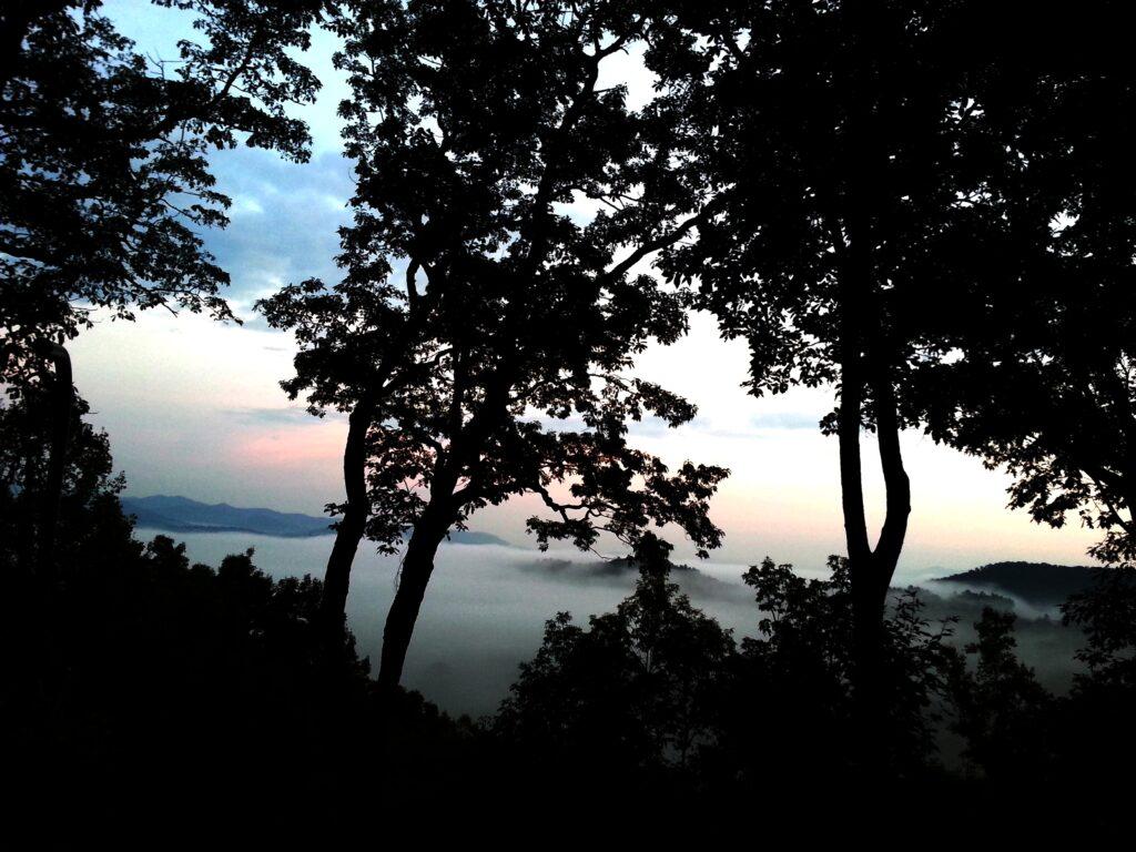Morning Mist Adj