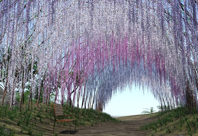 Wisteria In Care Of Relationships Terri Crosby